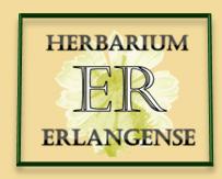 Herbar Logo