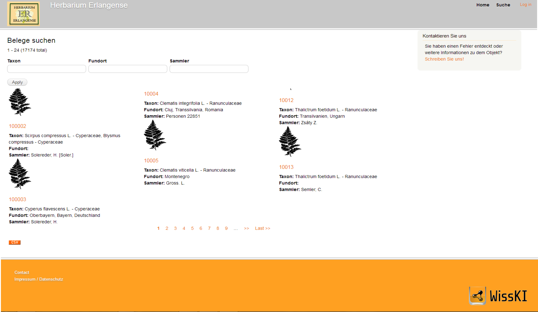 Screenshot Datenbank